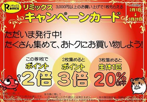 本日キャンペーンカード発行・配布最終日です!お急ぎ下さい!