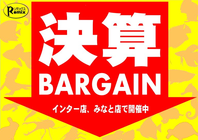 決算BARGAIN開催!