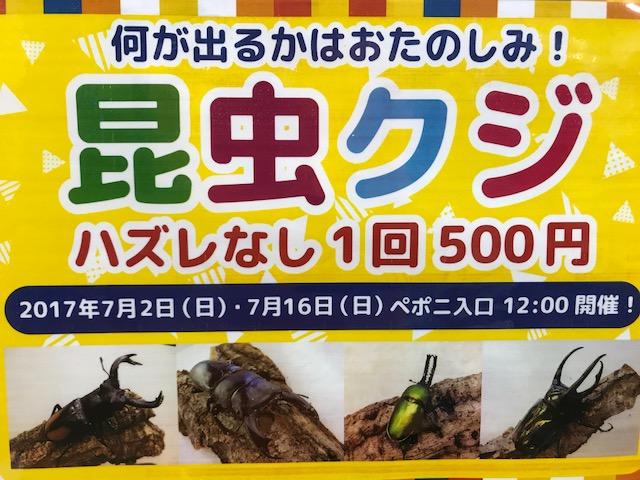 【mozoペポニ】ヨウム来たり!!