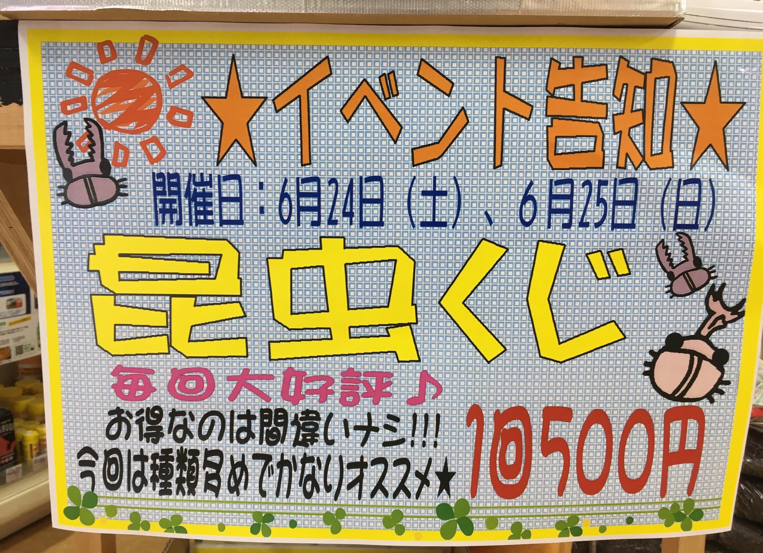 まさかの展開( ゚Д゚)昆虫クジ第6弾!!@インター小動物