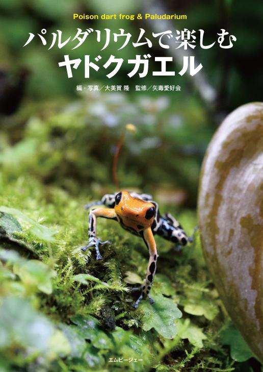 待望の新刊入荷!