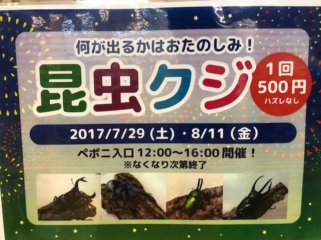 【mozoペポニ】虫クジやるよ~!