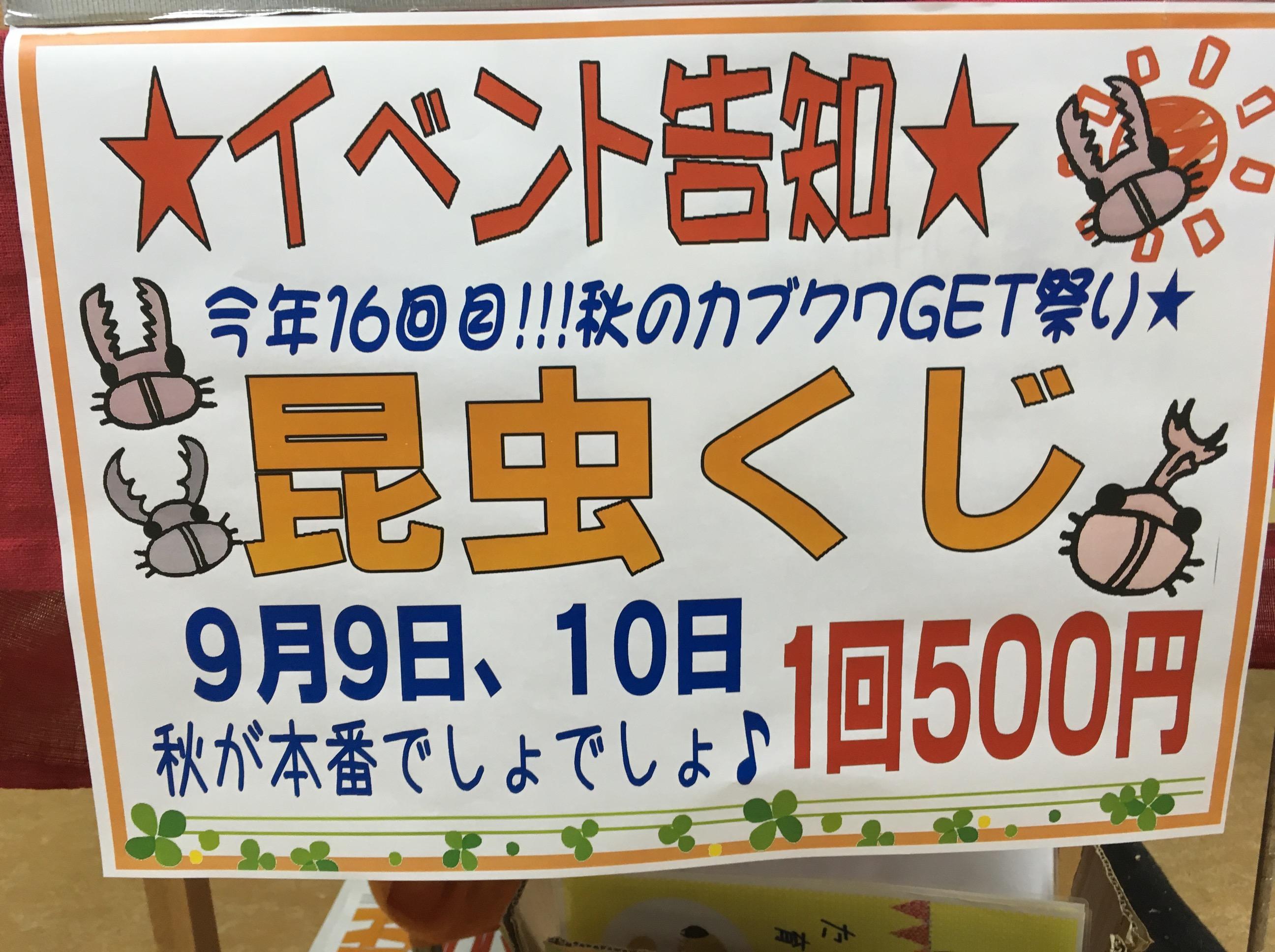 9月9.10日アツアツ昆虫クジ( `ー´)ノ@インター小動物