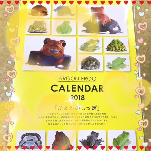 カレンダーをカエル時期に突入ですネ!!@インター小動物
