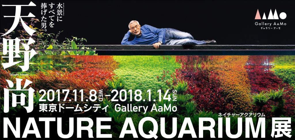 天野尚 NATURE AQUARIUM展
