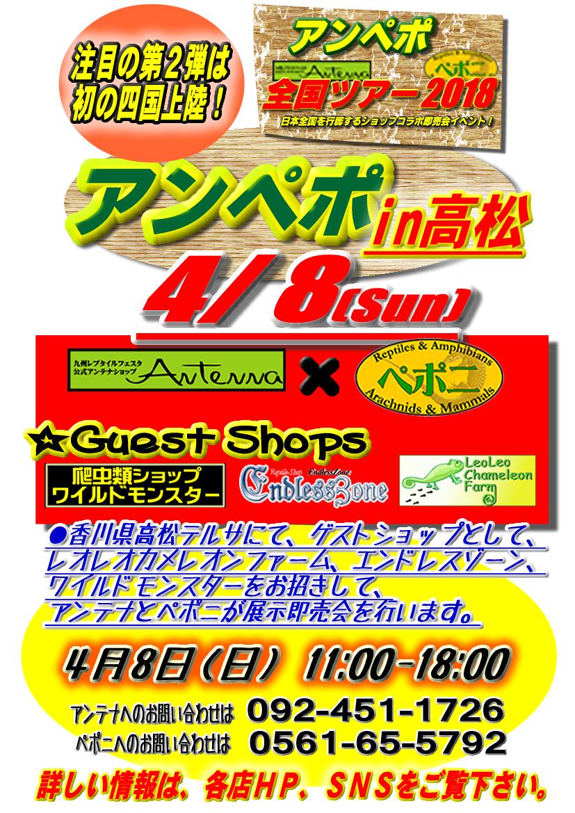 【告知】アンペポ全国ツアー2018 注目の第2弾は、4月8日(日)香川県高松テルサにて開催決定♪