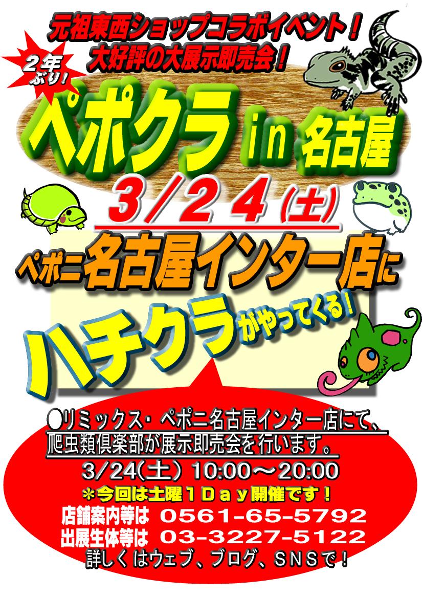 鬼物量!!明日3/24(土)は、待望のペポクラin名古屋インター店!!