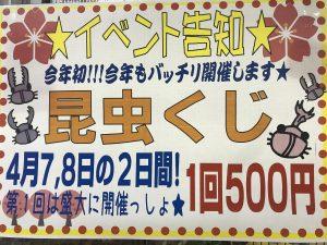 【インター小動物】今週末までイースター☆彡&昆虫クジで激アツ運転!!