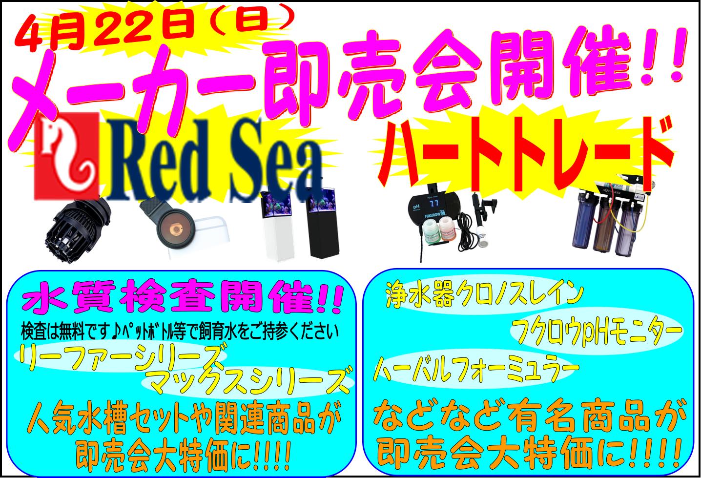 明日はインター店メーカー即売会in海水