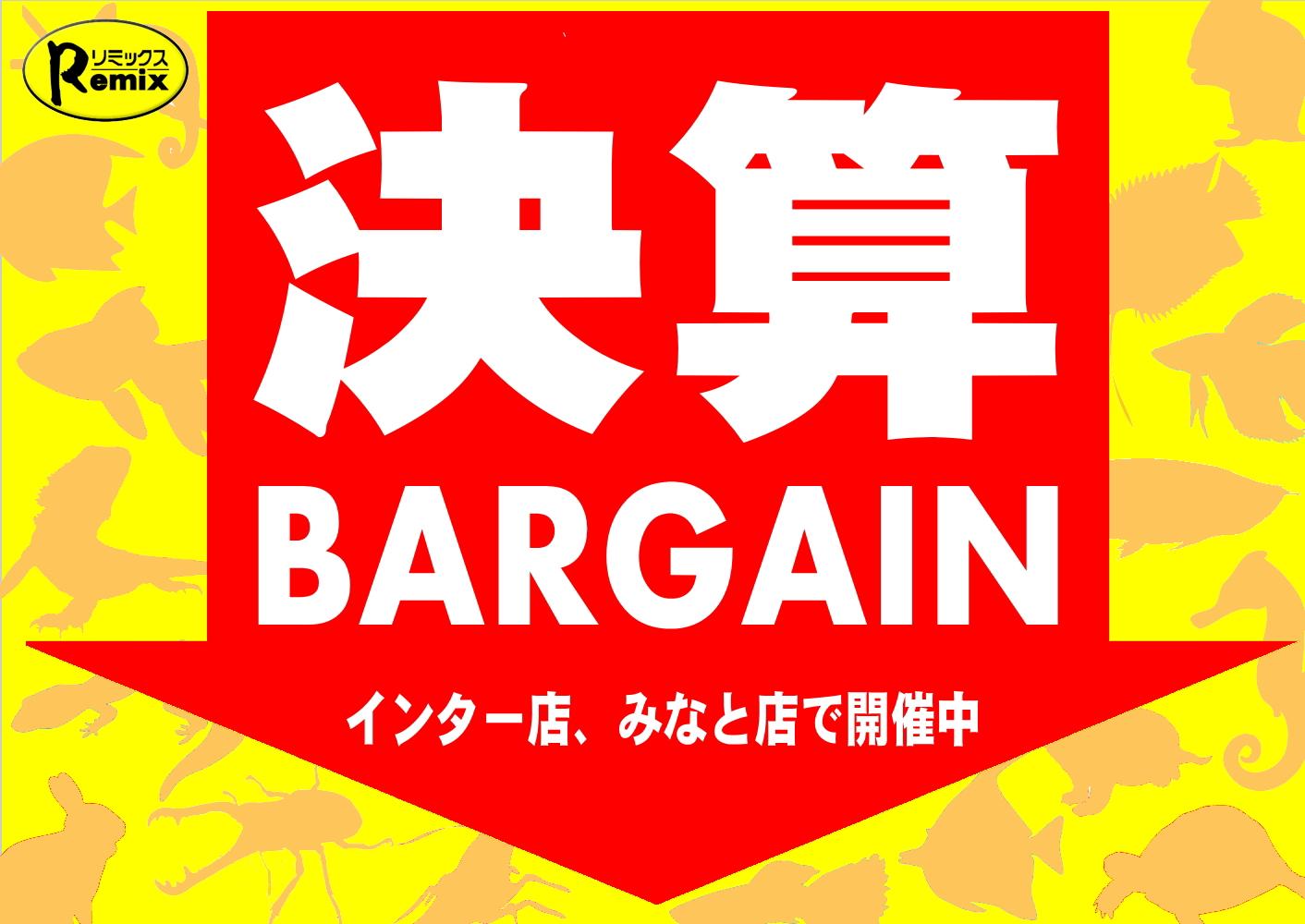 決算間近!!『決算BARGAIN』始まる!!@インター爬虫類