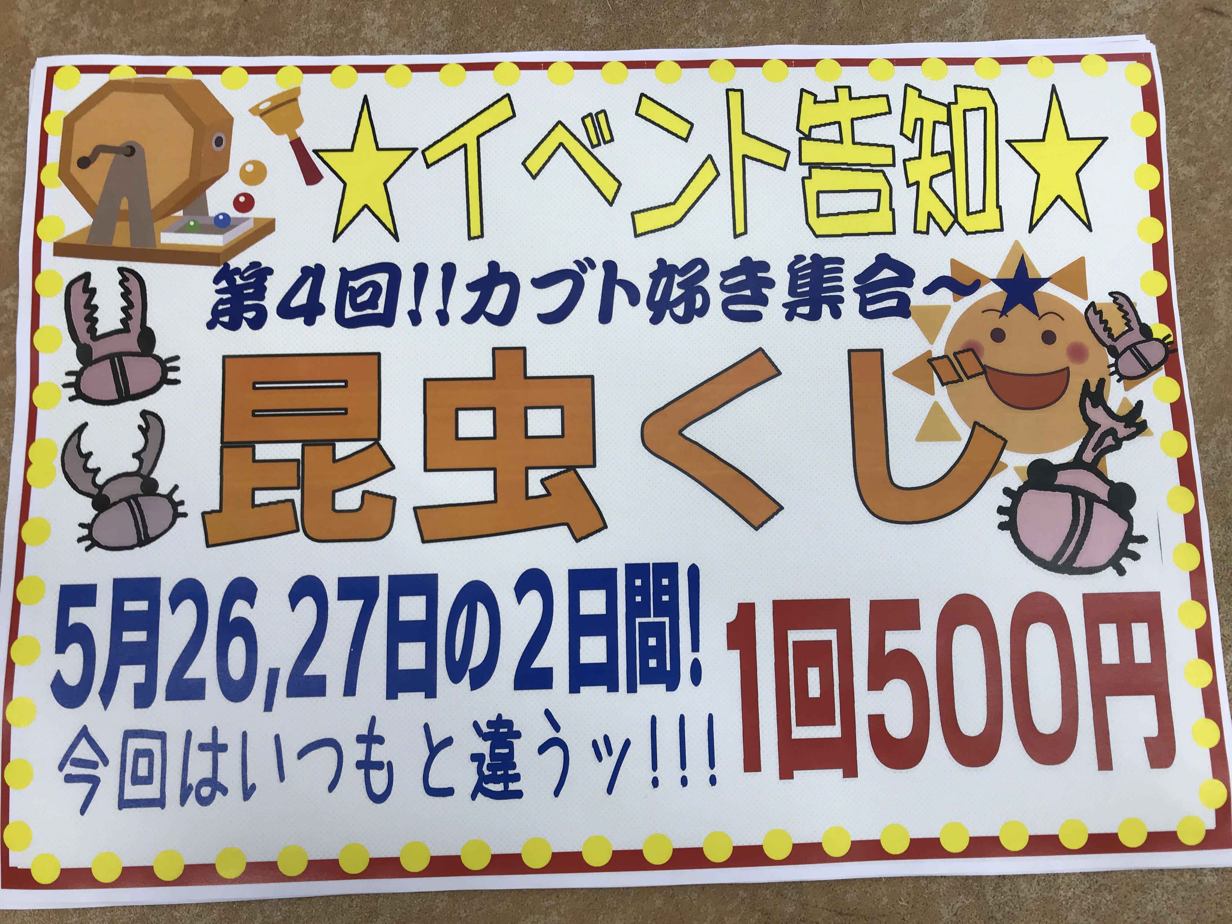 【インター小動物】日曜日ラスト!激アツ過激な昆虫くじを回しましょう!(^^)!