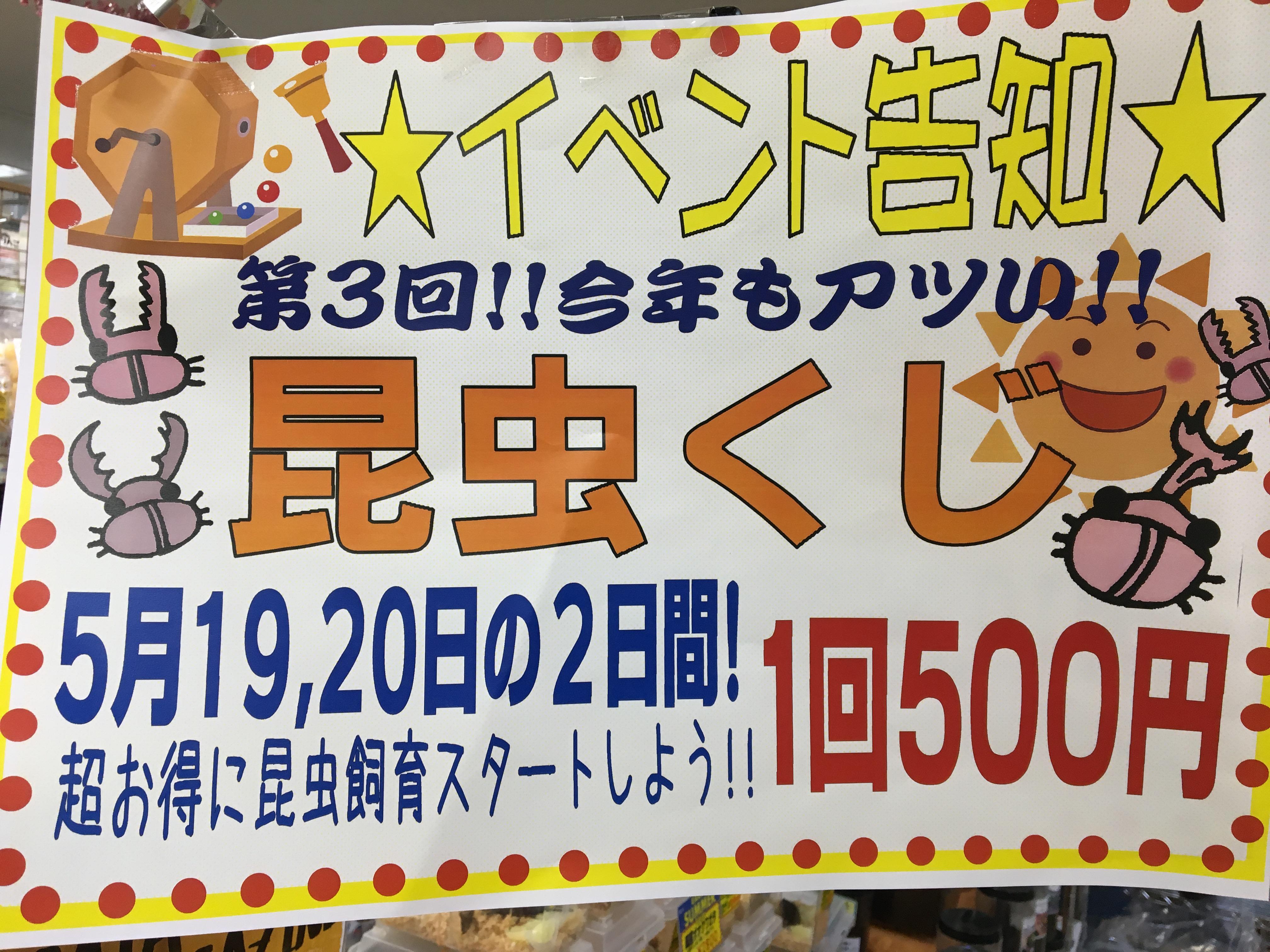 【 インター小動物 】昆虫and土日特価!!!