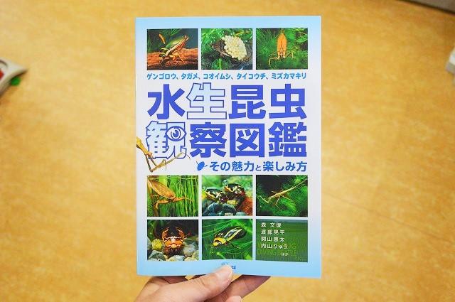 水生昆虫観察図鑑 !その魅力と楽しみ方