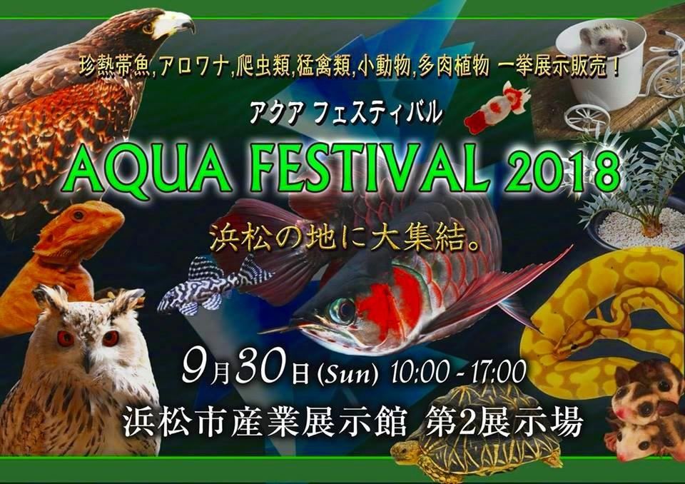 【イベント告知】AQUA FESTIVAL 2018! アクア フェスティバルに出展決定!