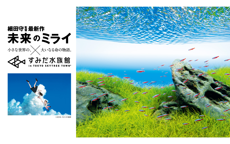 ADAからのお知らせ 「未来のミライ」×「すみだ水族館」