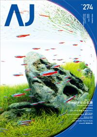 [ADAview] カージナル・テトラが群泳する八海石の石組み水景