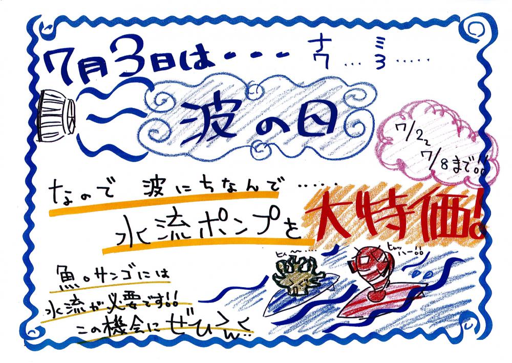 7.3 波の日襲来!!!!!
