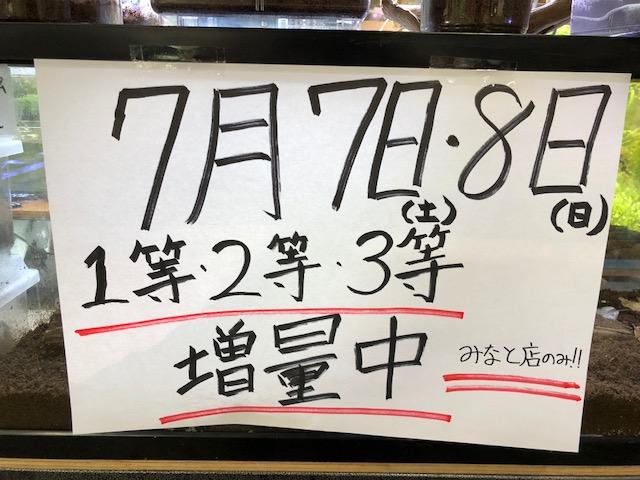 本日昆虫クジが熱い!!&本日12時より特殊2型ワーム数量特価!!