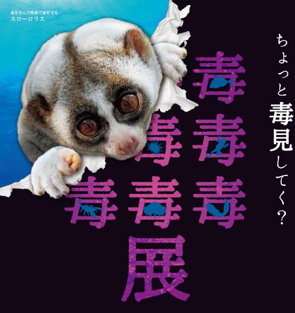毒毒毒毒毒毒毒毒毒展仙台〈もうどく展仙台〉本日最終日!!