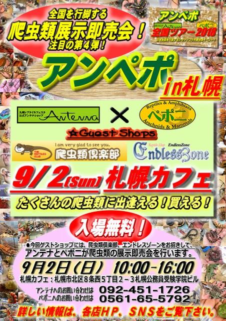 アンペポ in 札幌! いよいよ迫ってきました♪ 9/2(日)札幌カフェにて開催!