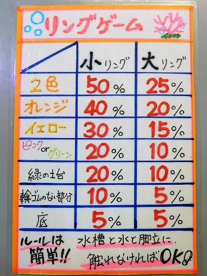 明日から魚最大50%オフ!!!!!