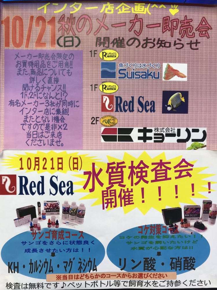 【海水】いよいよ今週末開催!!