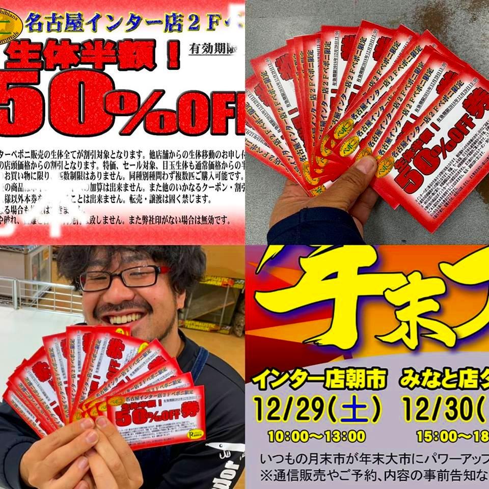 衝撃の『生体50%OFF券』も発動!ペポニ@インター店の年末大市!!