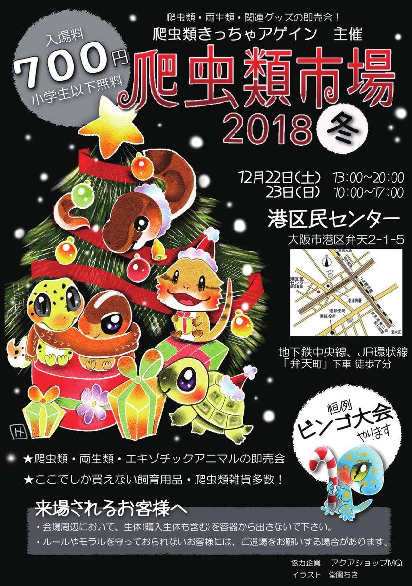 今週末土日は初の爬虫類市場!今年最後のイベントは大阪出撃です!!