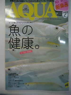 書籍新刊入荷!