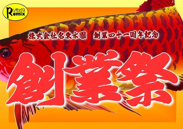 創業祭2019始まります!春日井 海水ブログ 190228