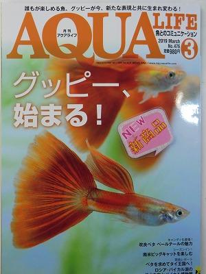 本日、アクアライフ3月号新刊届きました!