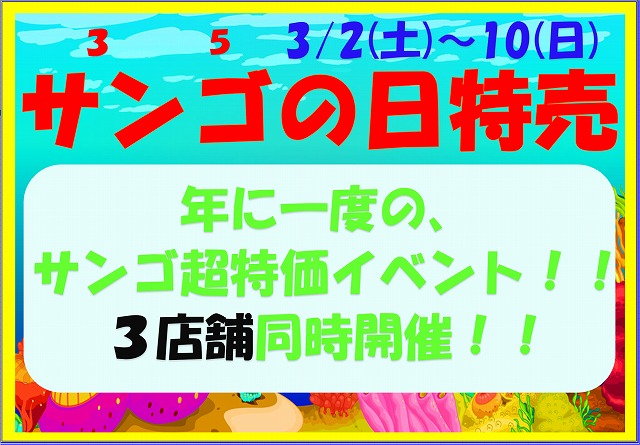 春日井店 海水ブログ 190302