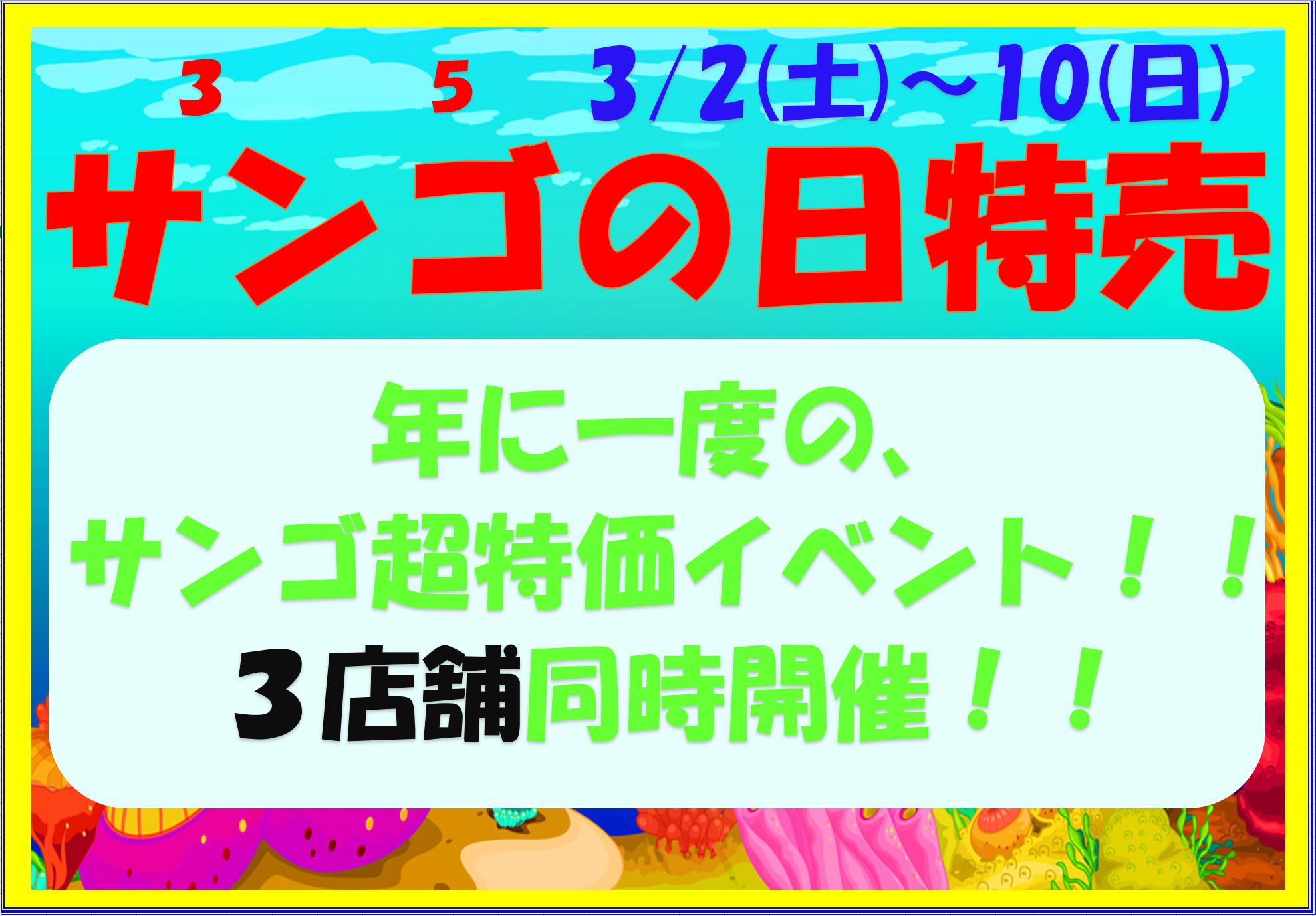 今年も開催!! サンゴの日特売!!!
