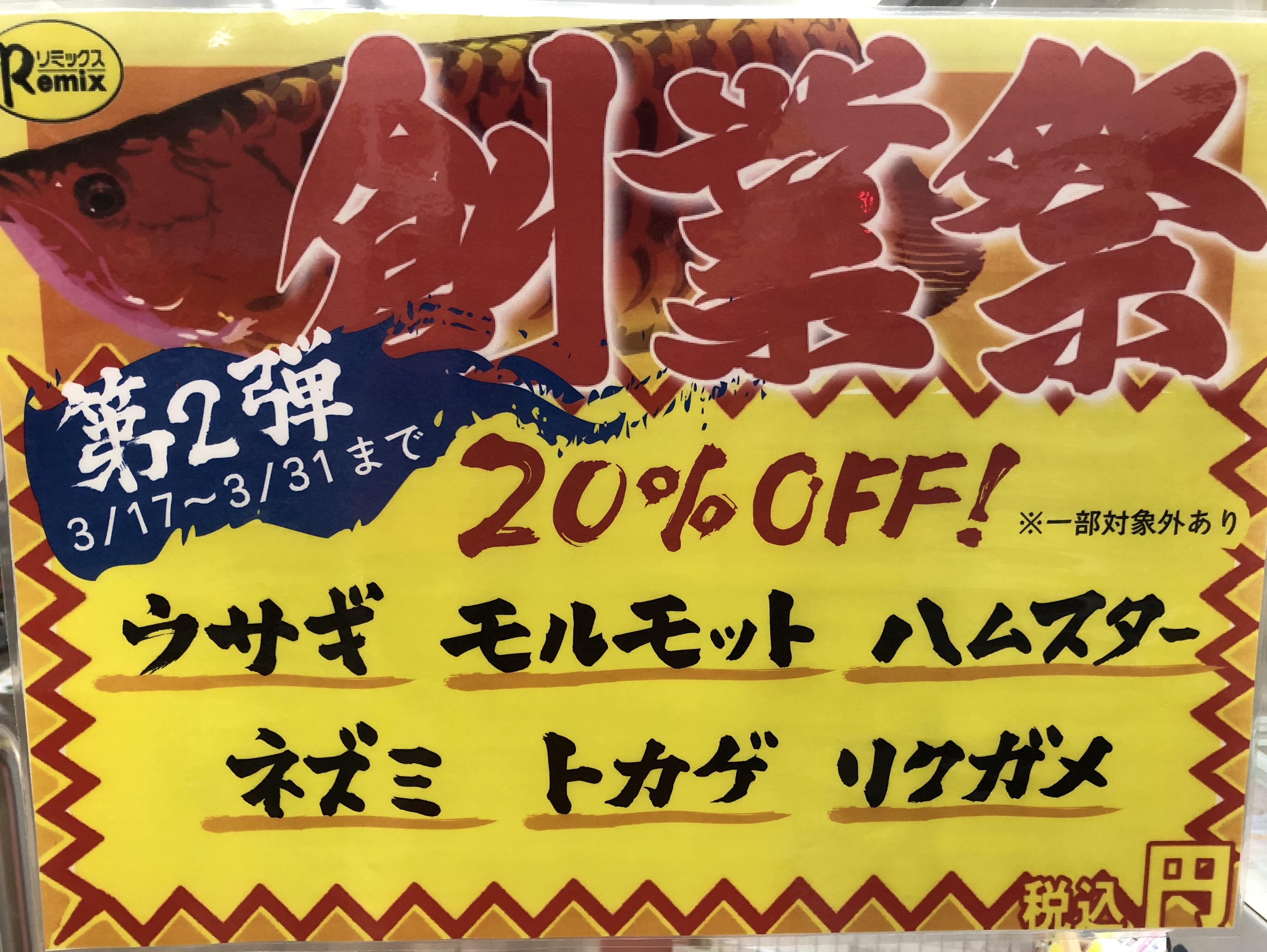 【春ペポニ】創業祭第二弾開幕!