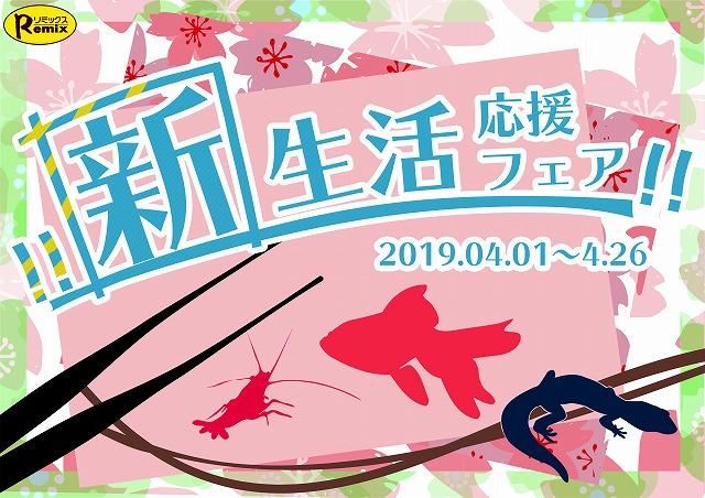 平成最後のフェア始まります! 春日井店 海水ブログ 190401
