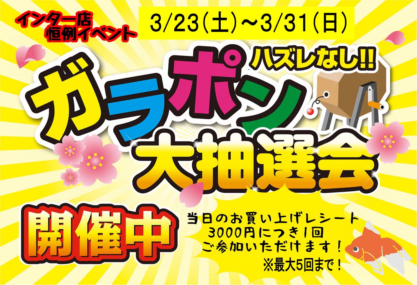 【インター小動物】創業祭!!ガラポンでフィーバー!!!