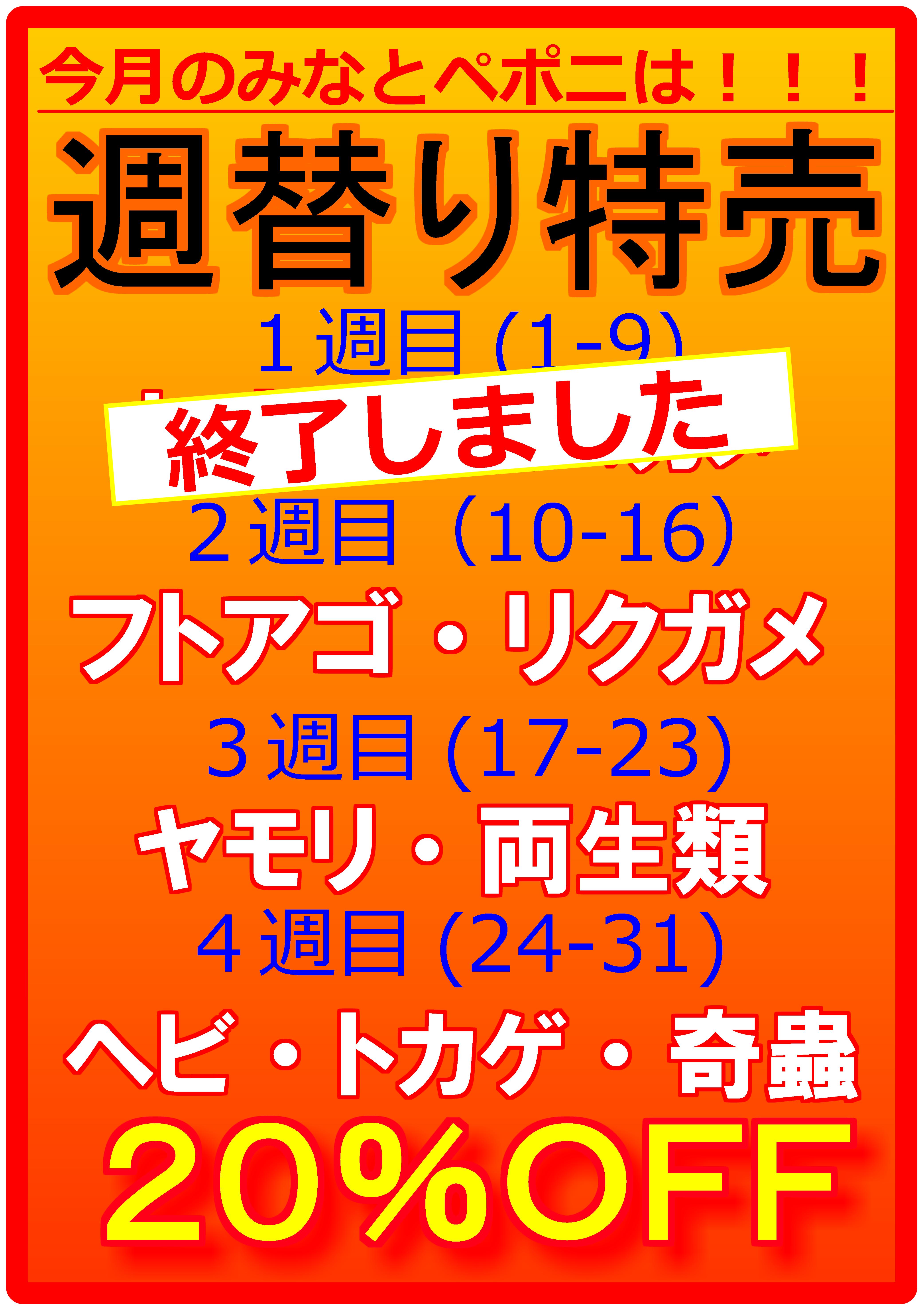 週替り特売2週目!!@みなとペポニ