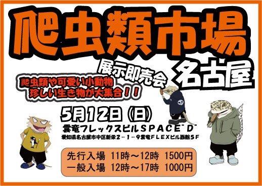 明日は爬虫類市場名古屋!@みなとペポニ