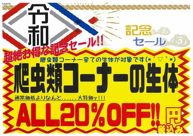 明日5/7より、令和記念セールスタートです!!もうどく展札幌も最終日!