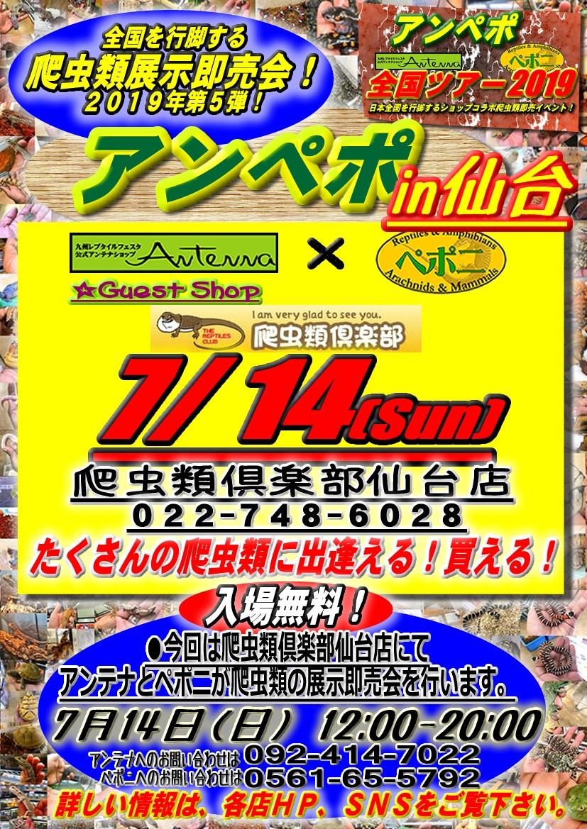 【告知】アンペポ全国ツアー2019第7弾はアンペポin仙台!