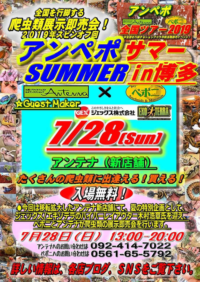 【告知】アンペポ全国ツアー2019夏のスピンオフは博多!