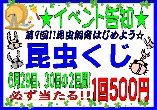 【インター小動物】明日からは!雨ニモマケズ 昆虫クジ!