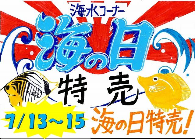 新入荷! 春日井店 海水ブログ 190715