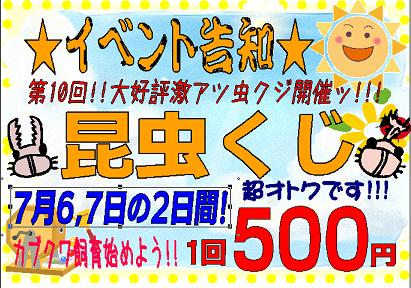 【インター小動物】明日あさってはムシがお得!昆虫クジ&土日特価&決算クリアランス!