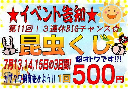 【インター小動物】あすから3日間!!昆虫クジ&連休特価ッ!!