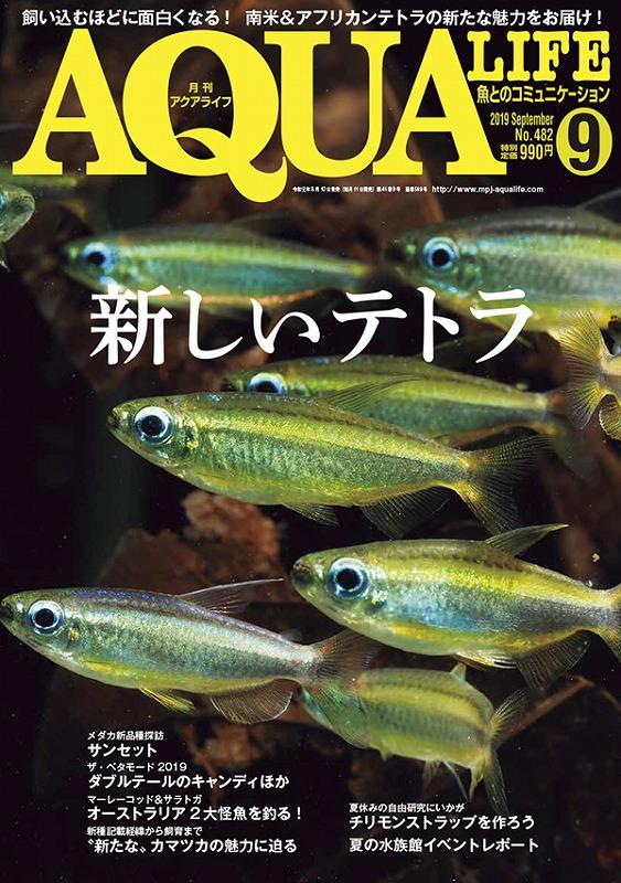 ~新刊のお知らせ~