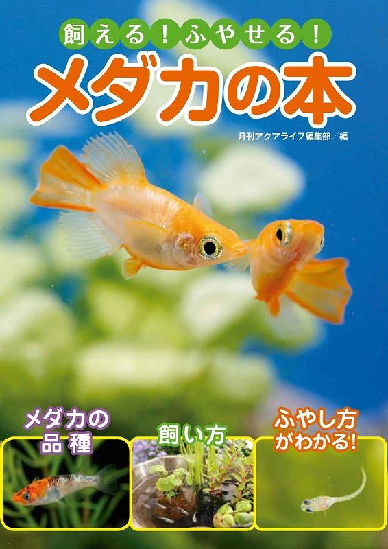新刊と冷凍キビナゴ