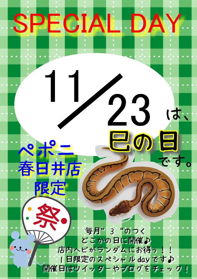 【春ペポニ】今月巳の日は23日!