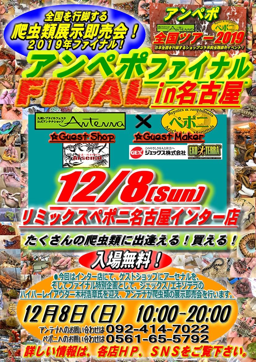 【告知】12/8(日)はアンペポファイナルin名古屋!