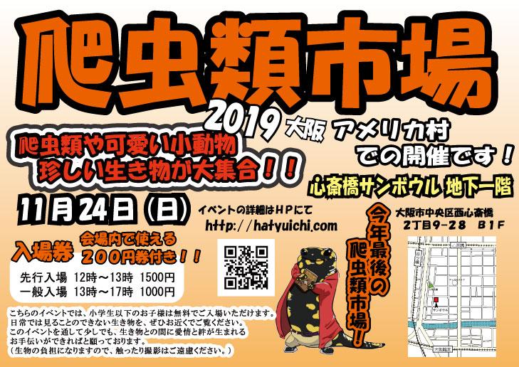 【告知】11/24(日)は爬虫類市場2019 大阪アメリカ村出展!